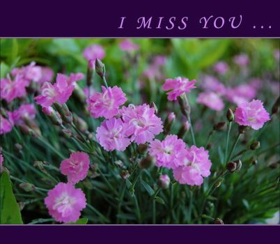 I  miss you ... by ForgivenDreamSoul