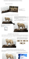 Yellwolfs short Photomanipulation tutorial by Yellwolf