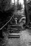 STAIRWAY TO HEAVEN by LunaPopelka