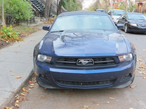 2012 Ford Mustang V6 Premium Convertible - Front by Kitteh-Pawz