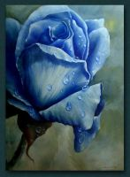 blue rose by sasbrush