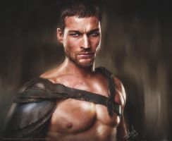 Andy Whitfield by Alian22