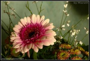 Birthday Flowers V by Miarath