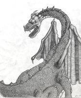 The Graphite Dragon by D4v3yTh3D0rk