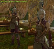 Beleg Cuthalion in Aion : Level 10 by fallenRazziel