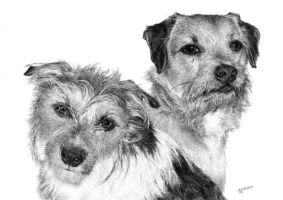 Molly and Doodle by arhicks