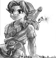 Young Link by kaicho20