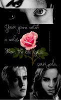 Dramione by DeathlyHallowsGirl
