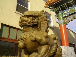 China Town's Golden Dragon by kakashisgirlfighter