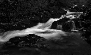 Flow II by psdlights