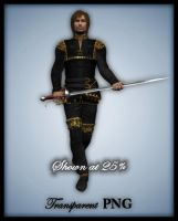Nobleman I-Figure Stock by shd-stock