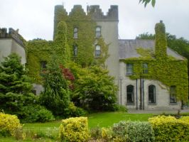 barretstown castle by Sunima