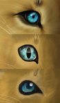 Lion Eiys Over Tiem by AbductionFromAbove