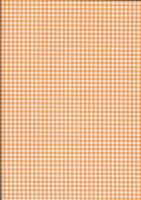 Orange Gingham by BelovedStock
