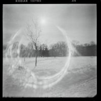 Snow, tree and the sun through a pinhole by StreetOfEarlySorrows