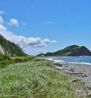 North of Cheticamp Cape Breton by Brian-B-Photography