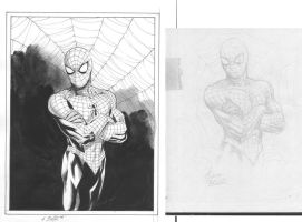 Spider-man_before+after by MichaelBair