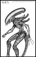 Giger's Alien by TheGoldenCrowbar