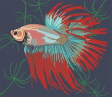 Betta - Crowntail by wobbly-sphinx