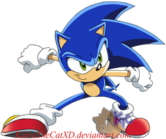 sonic X. by KairaA-TheCat