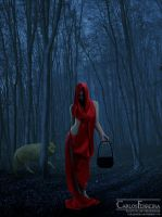 Red Ridding Hood by carlosferreira-art