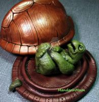 Turtle Shell Box with Nekked Turtle by MandarinMoon