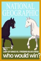 National Geographic: Racehorse Stuff by HonchoFreddy