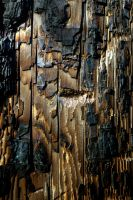 burn by InanimateSickBoy