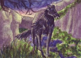 When the Barghest wakes [ATC] by NairaNorica