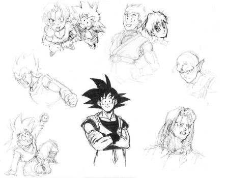 DBZ: Lots of sketches by Risachantag