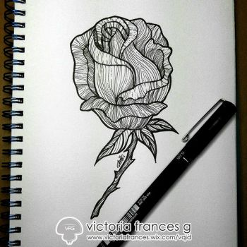 Rose Fantasia - Beauty by victoriafg