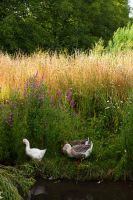 Norfolk Country Life by parallel-pam