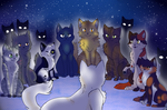 Welcome to Starclan Whitestorm *OLD* by Rimeku