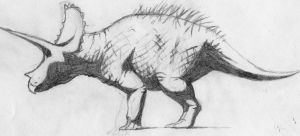 Triceratops horridus by Yapok96