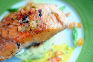 Salmon Fillet by aperture24
