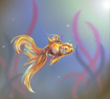 Gold Fish by RainbowFountains