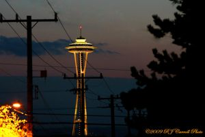 Night Needle by rjcarroll