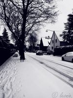 I've heard the streets are 'paved' with snow. by LeonieLionheart
