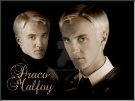 Draco Malfoy by Phebe76