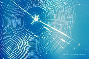 Spiral web by nhuthanh