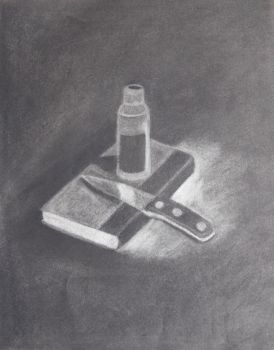 still life charcoal subtraction by ShelbyFoster