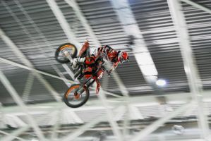 Fmx2 by MetallerLucy