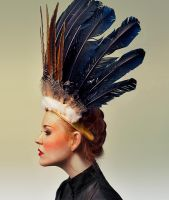 feathers by Rauschen