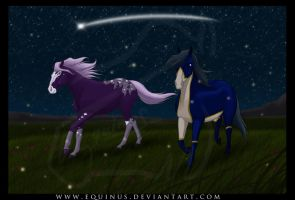 Starry Starry Night by Equinus