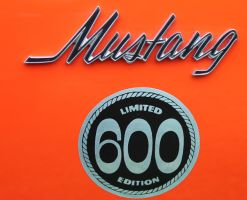 Mustang 600 by swiftysgarage