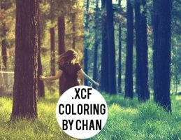 .xcf Gimp Coloring# by ChanGraphic by ChanGraphics