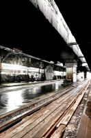 Toronto:  Union Station Shed II by basseca