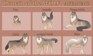 Sophie's Aging Stages by Tazihound