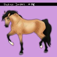 Padro Import #116 - Claimed by Boggeyboo