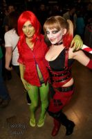 Arkham City Harley and Ivy by whos-got-pink-pjs